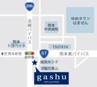 gashu DM用地図.png